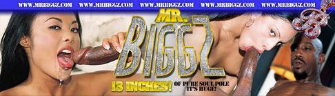 mrbiggz.com